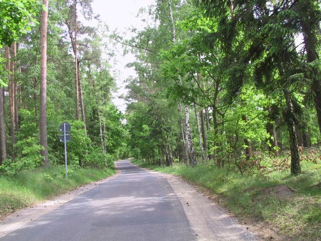 Die Umgebung - Der Müritz Nationalpark